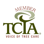 Tooher-Ferraris Insurance Group provides arborist insurance in Connecticut
